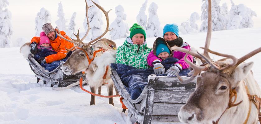 finland_lapland_levi_reindeer sleigh.jpeg